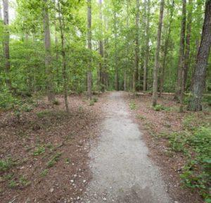 Latham-Whitehurst-Nature-Park-New-Bern-NC